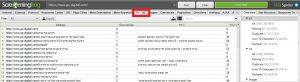 בדיקת קידום אתר - מדריך בדיקת אופטימיזציה לאתר DIY 4